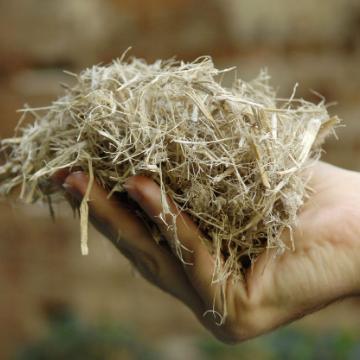 Sugarcane Bagasse - Up-cycled Plant Fiber