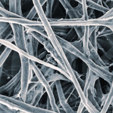 Micro fibrillated Cellulose